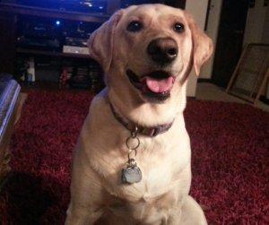 Madison smile